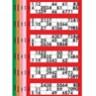 2000 Jumbo Bingo Tickets